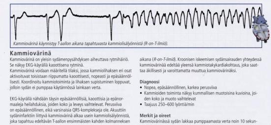 Sydämen rytmejä | sonjamimosa